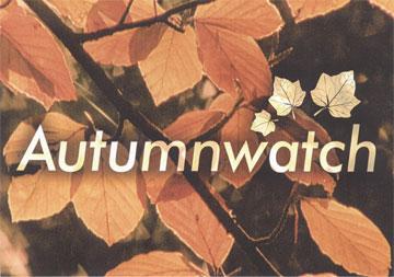 Autumnwatch